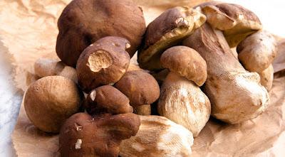 Medicinal Mushrooms Substitute for Beta-Blockers