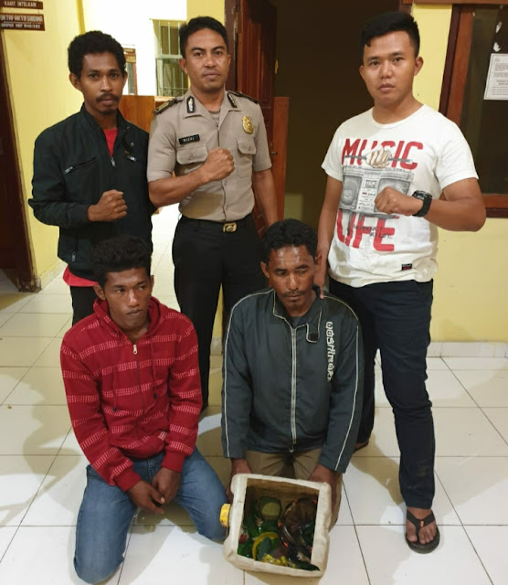Polsek Reo Berhasil Tangkap Pemilik Bom Ikan di Pantai Nanga Nae