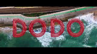 Arrow Bwoy - Dodo
