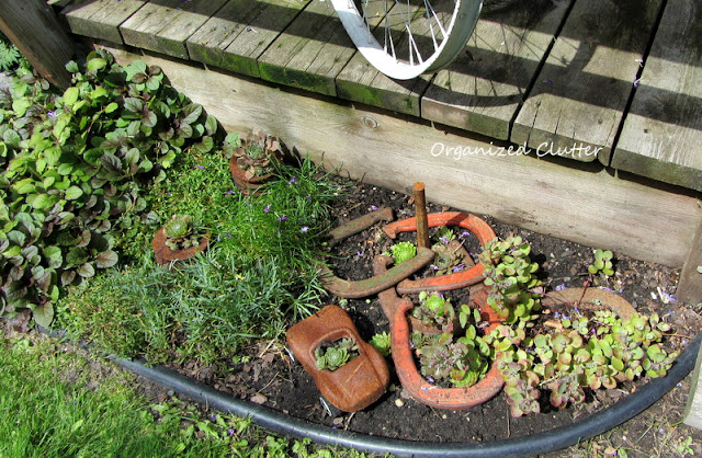 Horseshoes, rusty sports car and sempervivum