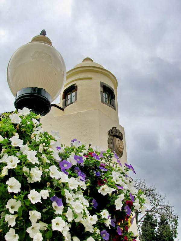 the flowers with a palace