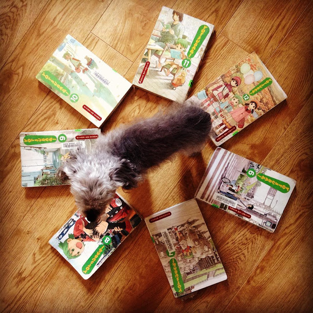 Short-haired Murchie stands in the middle of seven paperback volumes of Yotsuba arranged like a clock and photographed from above. Each of the books features a green-haired girl having the time of her life at a variety of activities, like camping, bike riding, and meeting sheep.