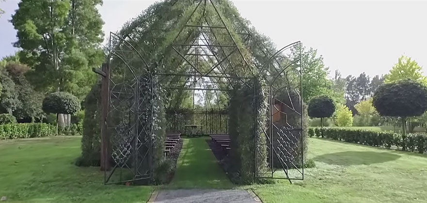 This Man Spent 4-Years Growing A Living Church Out Of Trees In His Backyard. The Results Will Blow You Away.