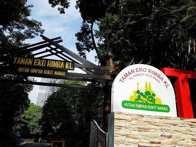 【雪隆景点】Taman Eko Rimba Kuala Lumpur Hutan Simpan Bukit Nanas   闹市中吉隆坡塔前的森林空中吊桥Canopy Walk