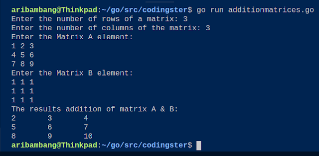 The Output of Program Addition Two Matrices (Golang)
