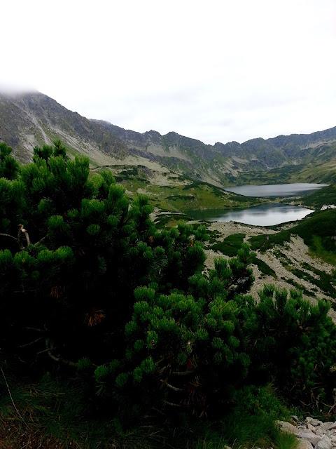 dolina pieciu stawow