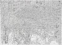 Richard Müller: dessin Winterzeichnung 6