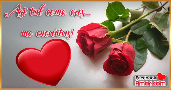 Imágenes de Amor con Frases de Flores Rosas Rojas