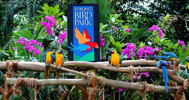 Paket Wisata Batam Singapore Pulau Bintan 3D2N