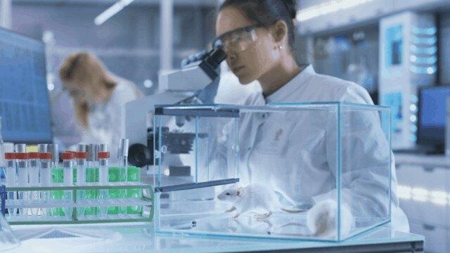 Chuyên gia: Hiện chỉ có một loại thuốc có thể giúp điều trị COVID-19
