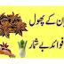 Benefits of badian flowers in urdu | Hindi