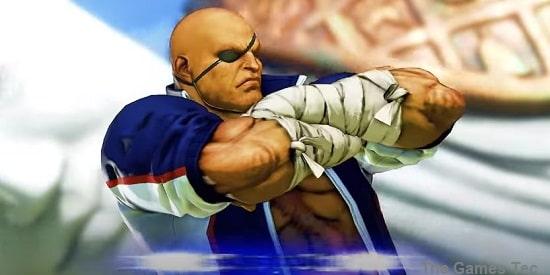 Street Fighter V Champion Edition PC   Capcom Fighting Game Street Fighter V Champion Edition for PC Review