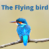 The little Flying Bird English kid story