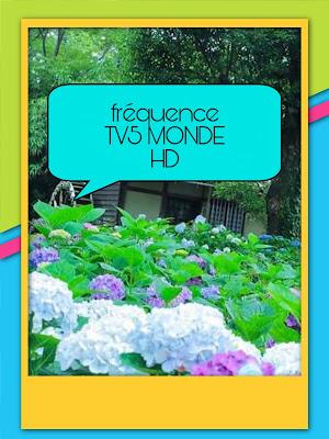 Fréquence TV5 MONDE HD sur badr ou Arabsat gratuit 2020
