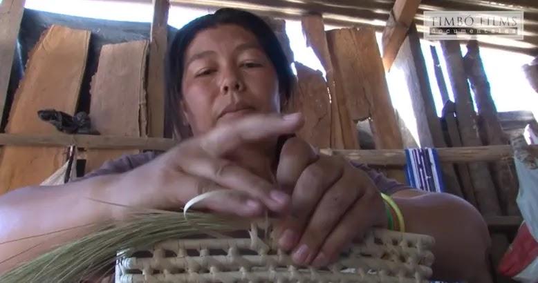 Serie Chaco: Desarrollo en el Impenetrable