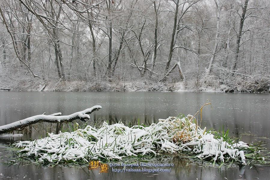 первый снег чернигов