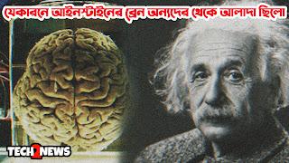 যেকারনে আইনস্টাইনের আইকিউ (IQ) সাধারণ মানুষদের থেকে বেশী ছিলো