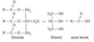 Jika R-nya berbeda maka akan dihasilkan campuran 3 macam asam lemak