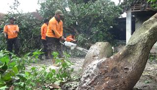 Siklus Tropis Di Jawa Selatan Sedang Tak Stabil,Waspadai 5 Kecamatan Sebagai Jalur Angin