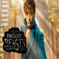 http://patronesamigurumis.blogspot.com.es/2017/05/fantastic-beasts.html