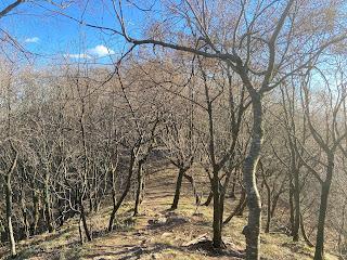 Trail 507 below Canto Alto.