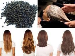 فوائد الفلفل الأسود للشعر والبشرة والصحة العامة والجهاز الهضمى