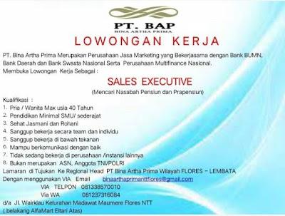 Lowongan Kerja PT Bina Artha Prima Sebagai Sales Executive