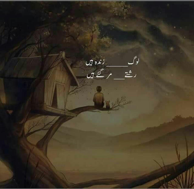Best Life Quotes in Urdu - Log zinda hain