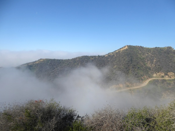 Misty Runyon Canyon