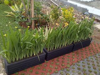 tukang grass block