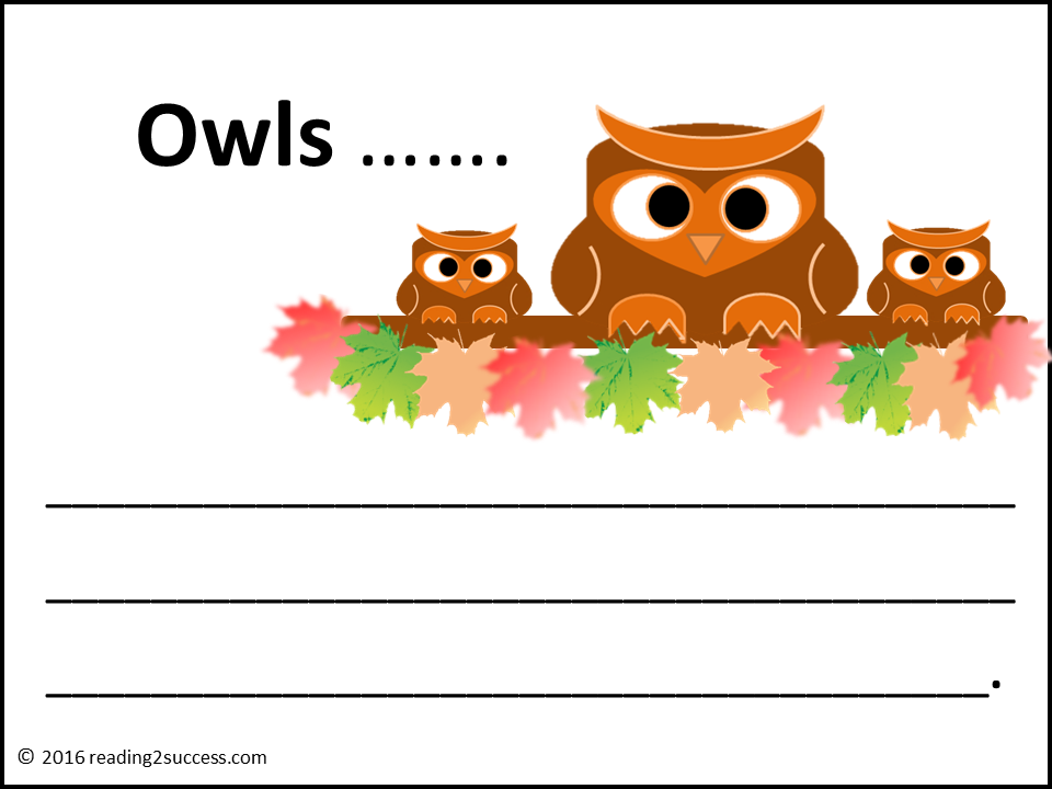 Owl Theme Unit, Activities, Lessons, Crafts, Fun Class ...
