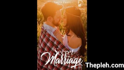 Novel secret marriage