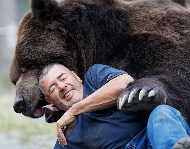 Дружба медведя Джимбо с человеком