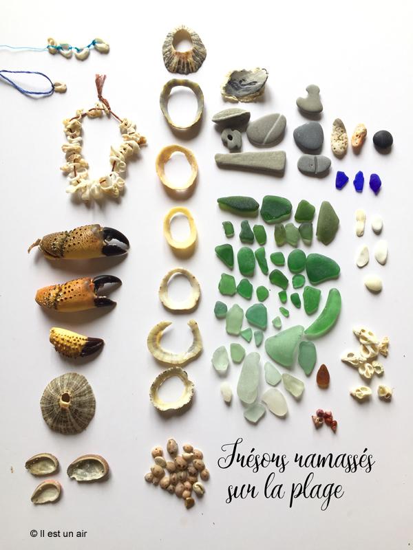 Trésors trouvés sur la plage, coquillages et morceaux de verre poli
