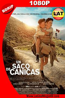 Un Saco de Canicas (2017) Latino HD BDRIP 1080P - 2017