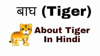 बाघ (Tiger) — About Tiger In Hindi