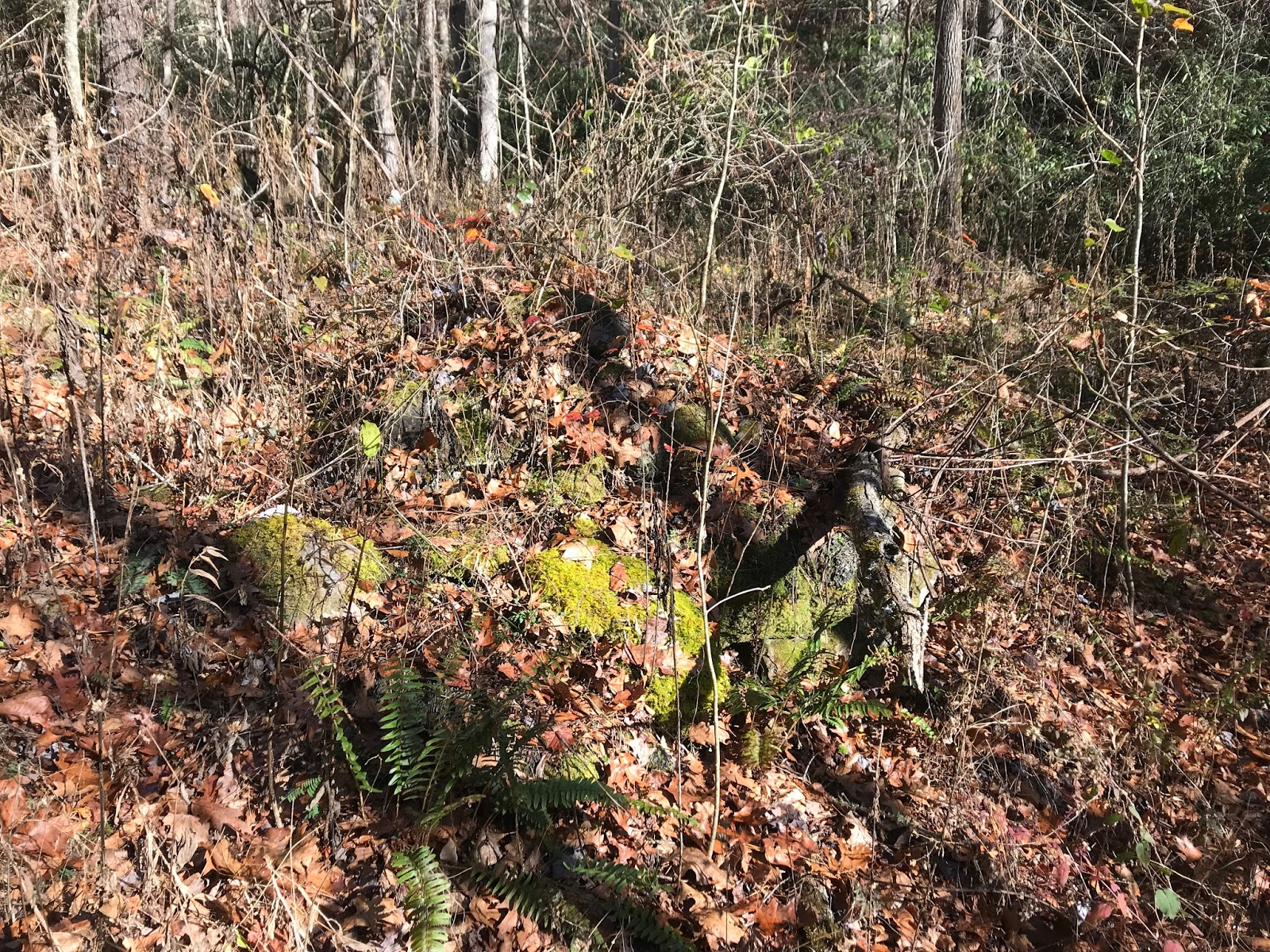 Cemeteries of the Smokies: November 2017