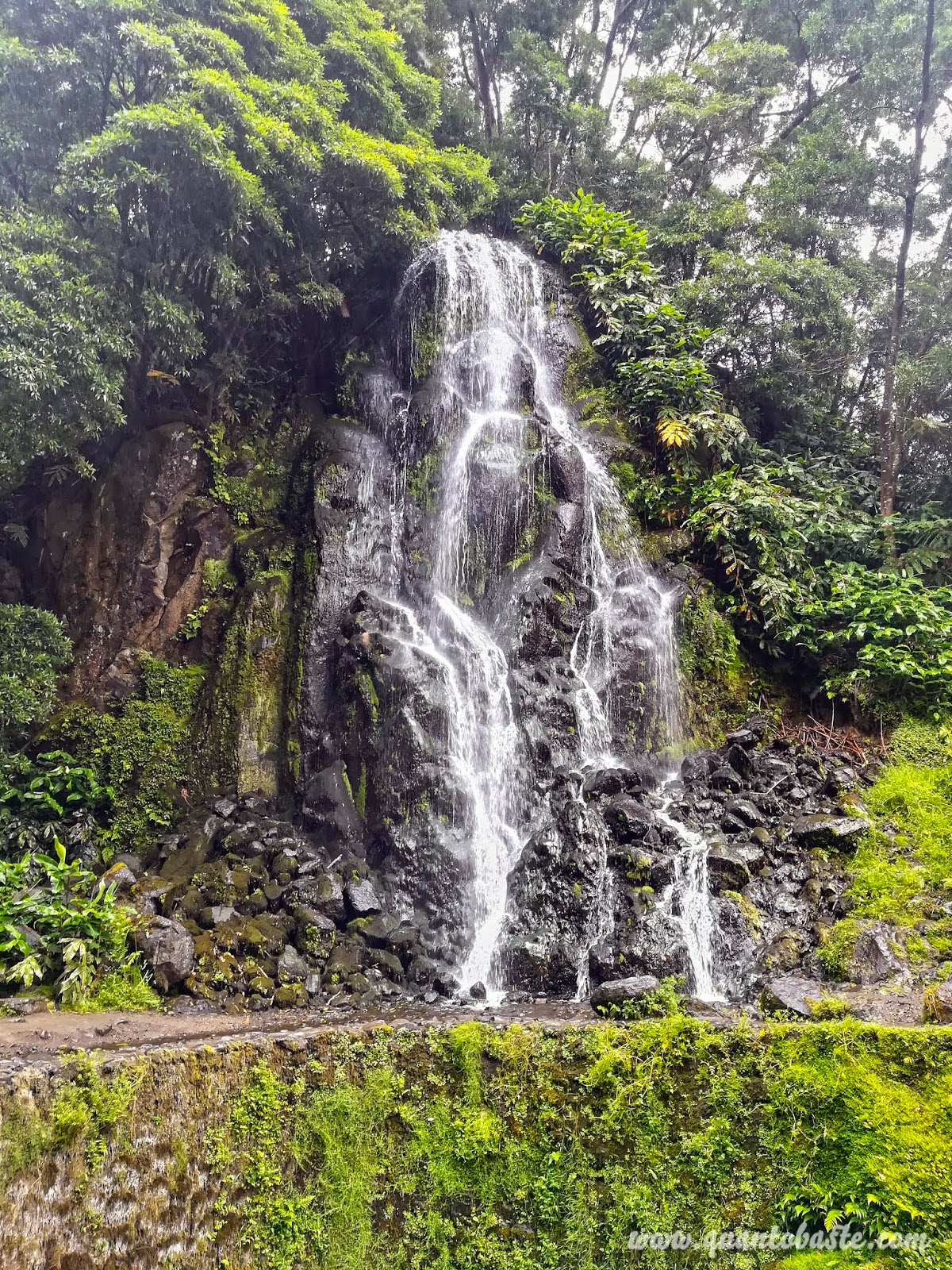 Parque Natural da Ribeira dos Caldeirões - Nordeste - São Miguel - Açores