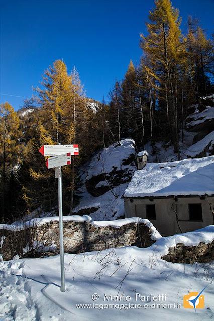 Alpe Forcoletta