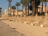 طريق الكباش بين معبد الأقصر ومعبد الكرنك