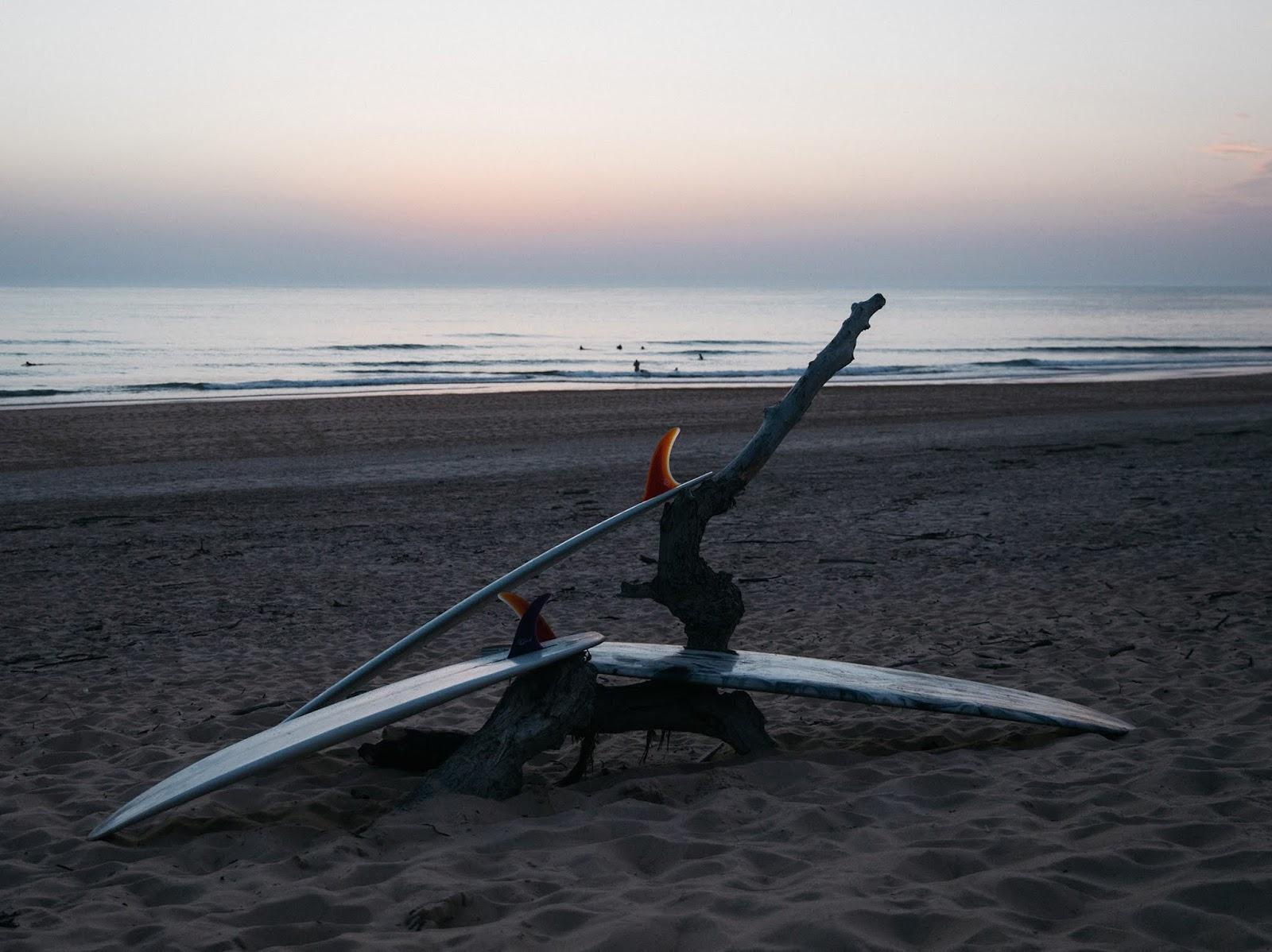 Surfboards Surfin Estate -by Pierre David