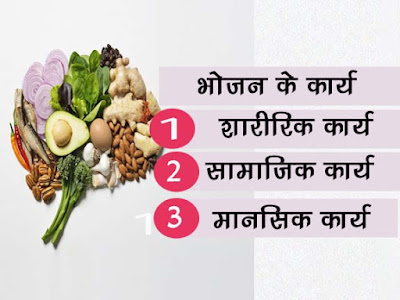 भोजन के कार्य   Food Role in Human Life in Hindi