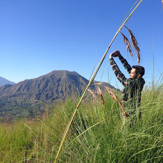 wisata Desa Pinggan