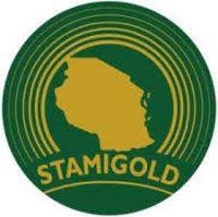 Senior Procurement Officer at STAMIGOLD