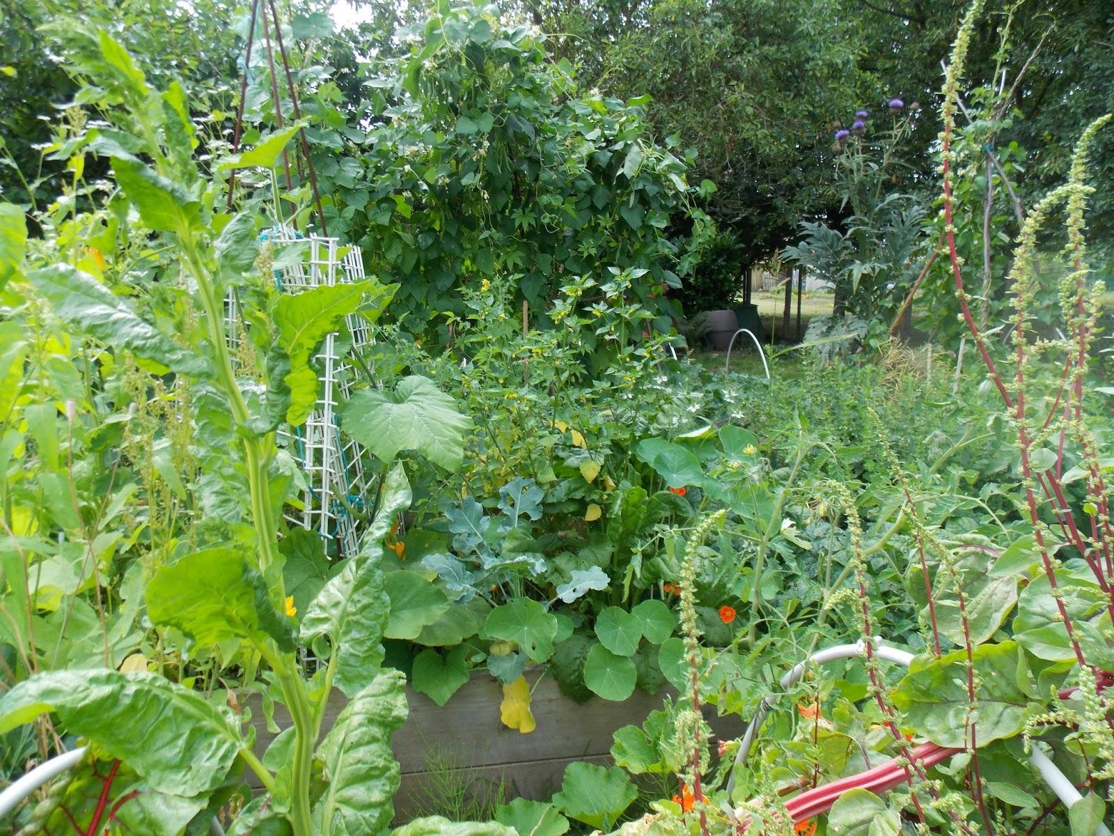 Ecolo bio nature permaculture urbaine et jardinage bio for Jardin et jardinage