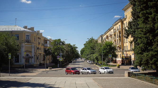 Волгоград улица деревья