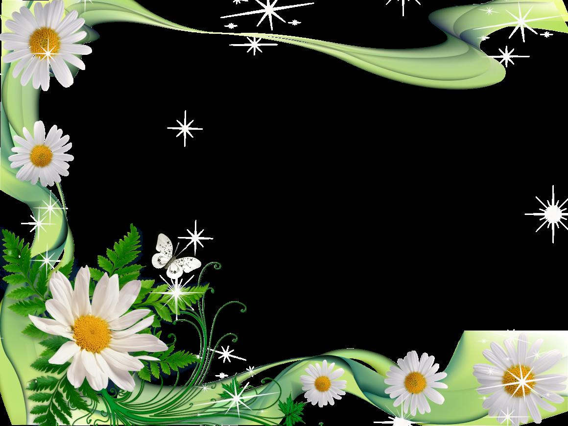 Flores Blancas Png 800 600