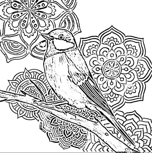 Bird Mandala coloring pages holiday.filminspector.cmo