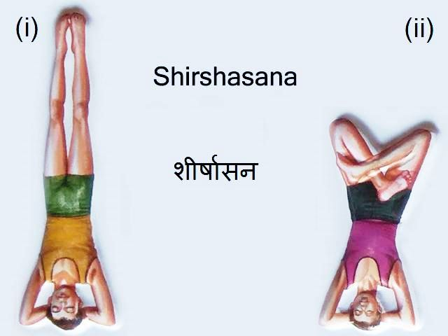 Sirsasana: Sirsasana in Hindi