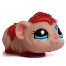 Littlest Pet Shop Multi Pack Guinea Pig (#2261) Pet
